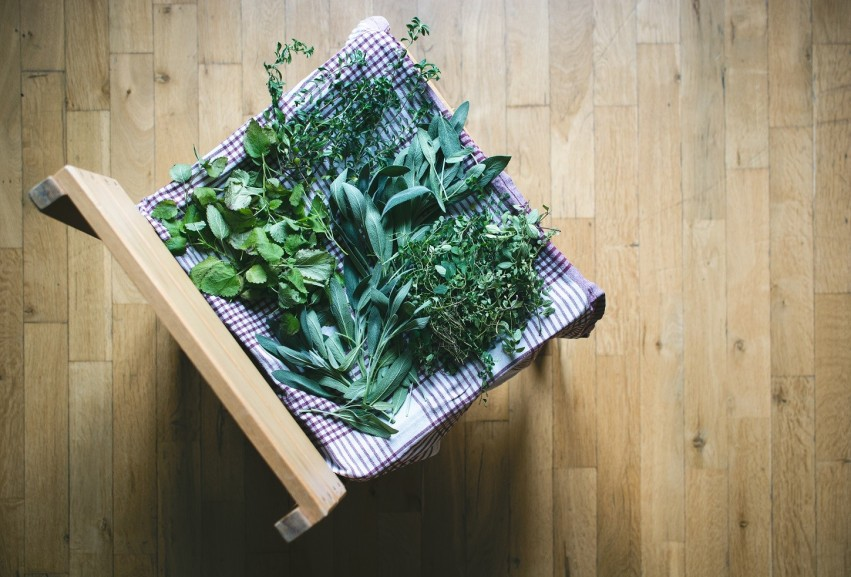 Harvesting and storage of herbs grown at home
